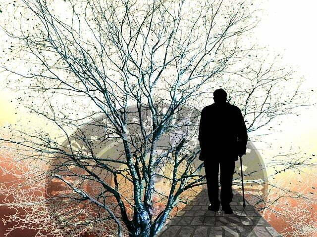 Zaburzenia pamięci miedzy roztargnieniem a chorobą